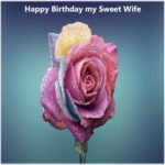 424+ Birthday images for wife hd download
