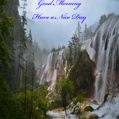 Whatsapp Good Morning Pics hd download