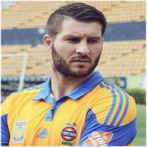 andre pierre gignac image